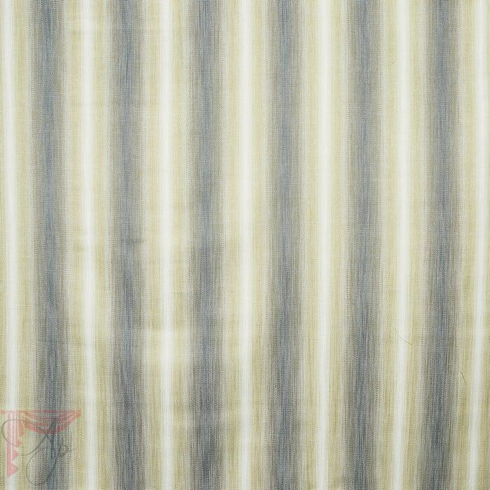 AP_ASTON-MIMOSA