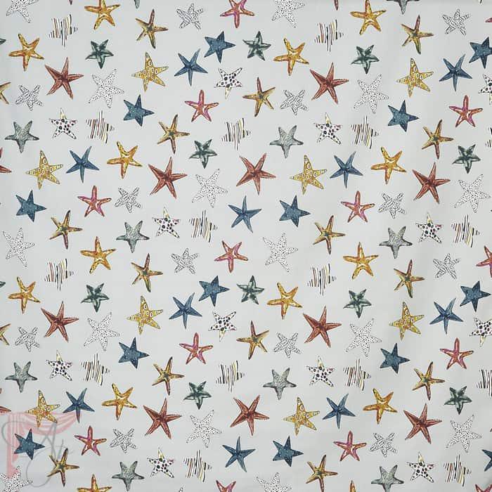 AP_STARFISH-PEBBLE