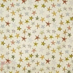 AP_STARFISH-SAND